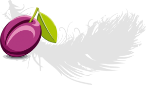 plum enterprises logo